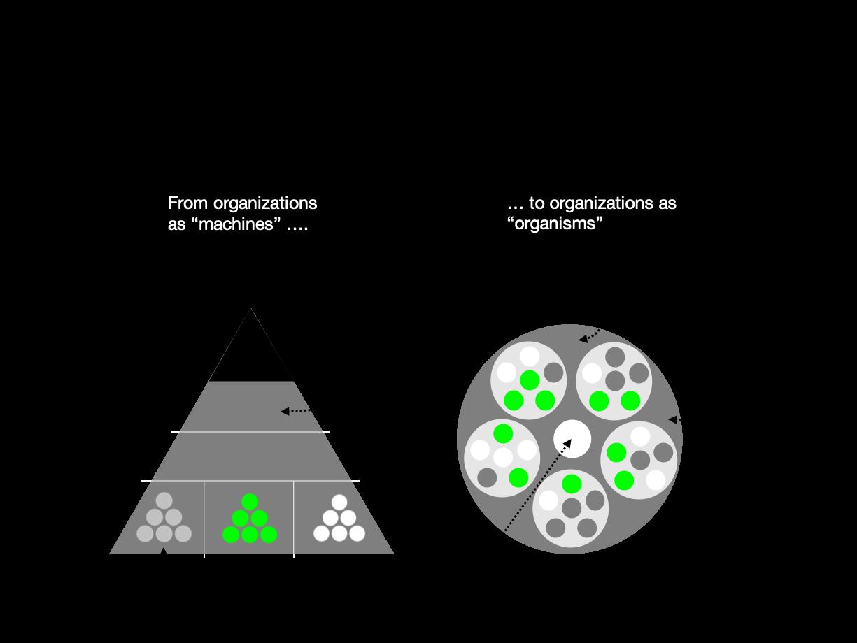 agile vs traditional organization
